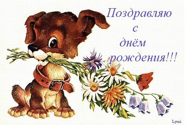 С Днем Рождения, Яна! Fc1d3bafa3515419178feed402db548a