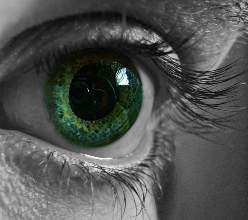 Биофизика цветового зрения