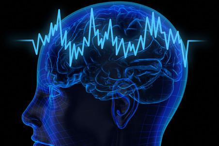 Волновые процессы в зрительной коре мозга