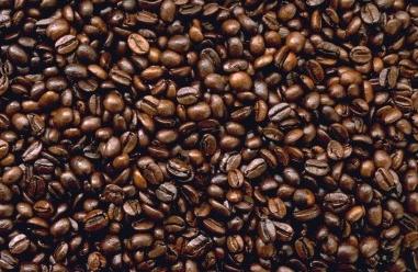 Як расце кава?