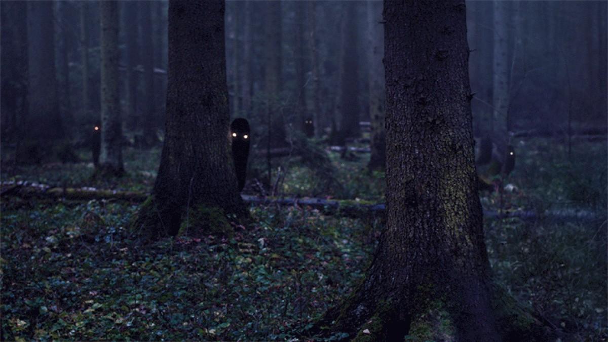 Чудовище в лесу 3 фотография