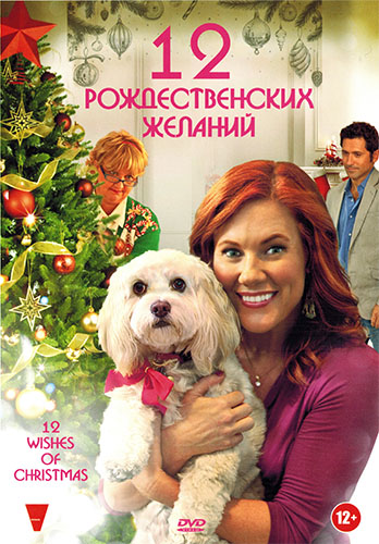 12 �������������� ������� / 12 Wishes of Christmas (2011) DVDRip