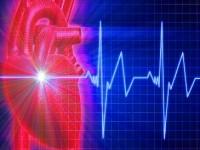 Научные работники узнали, как можно также возобновить утраченную сердечную материал