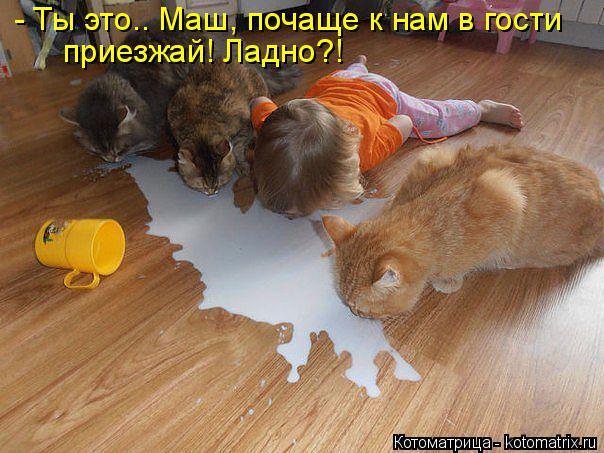 http://s6.hostingkartinok.com/uploads/images/2014/03/3f07cc2b465ece20883eb20830b571a4.jpg