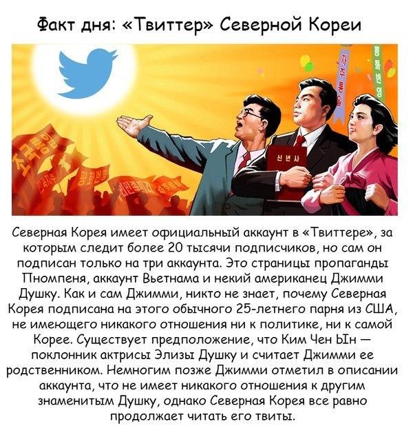 http://s6.hostingkartinok.com/uploads/images/2014/03/a3b4edcac09ef5296d5467316f5a486a.jpg