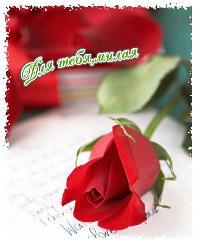 Ты мне нравишься открытки с цветами, днем