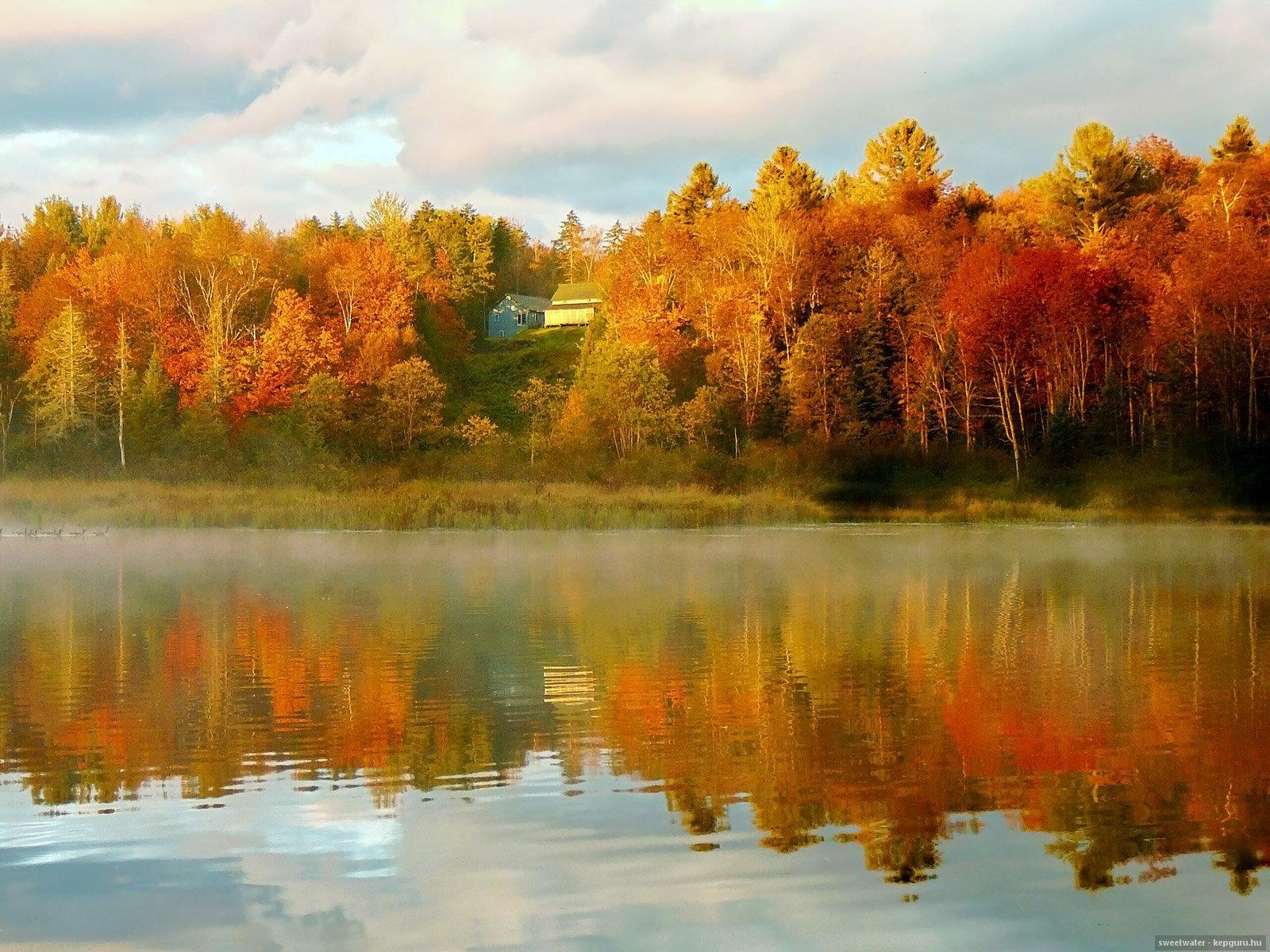 Заработало прикольные, отражение в воде картинки осень