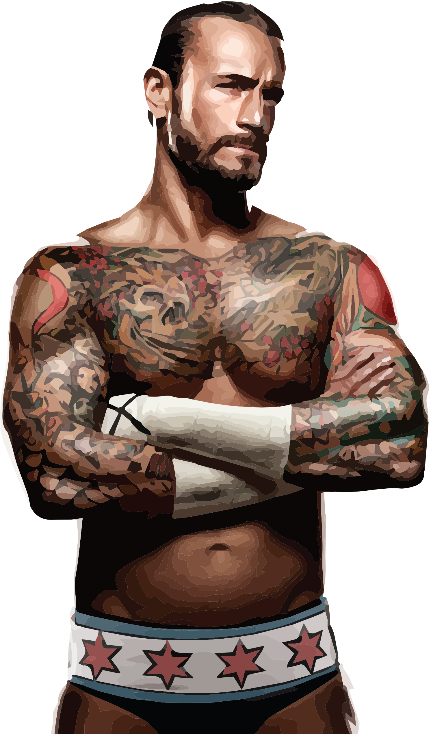 Nude pictures of cm punk